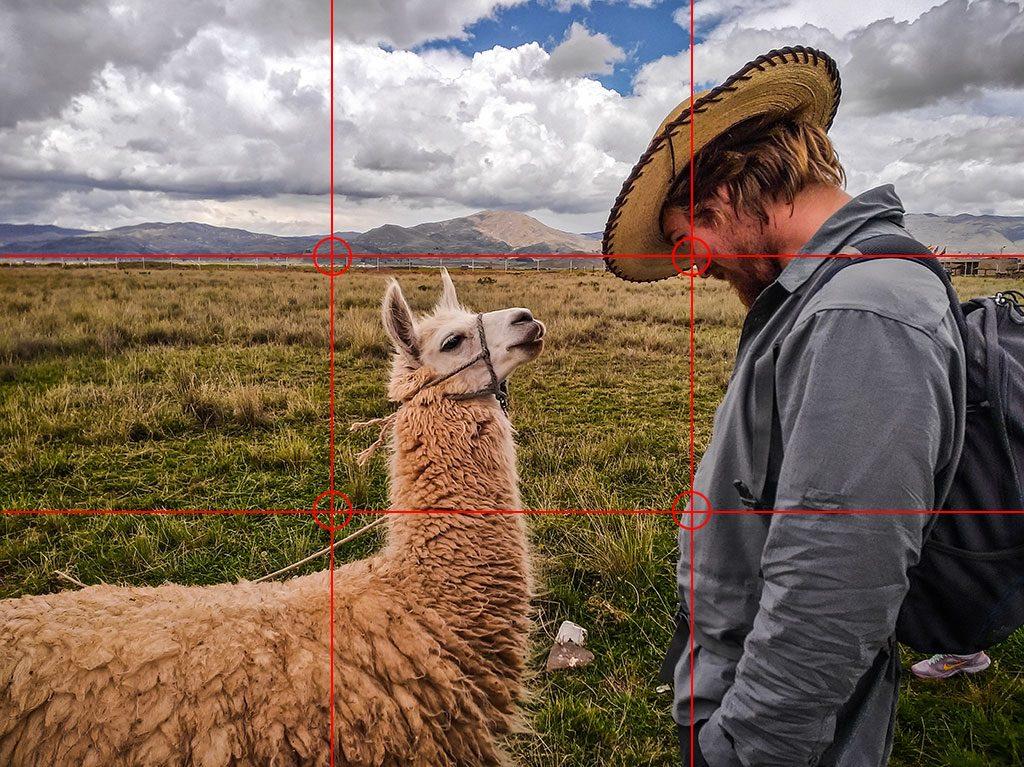 Règle des trois photo homme et lama